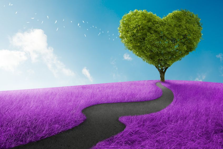 el camino del amor