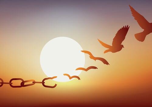 cadenas-transformandose-pajaros