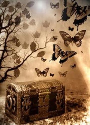 baul-y-mariposas