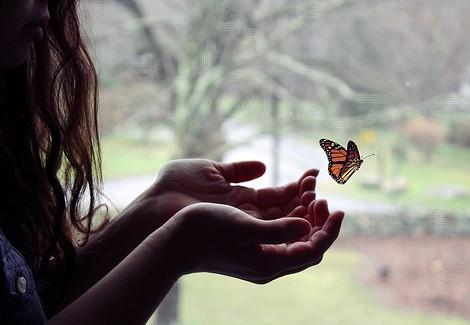 Soltando mariposa