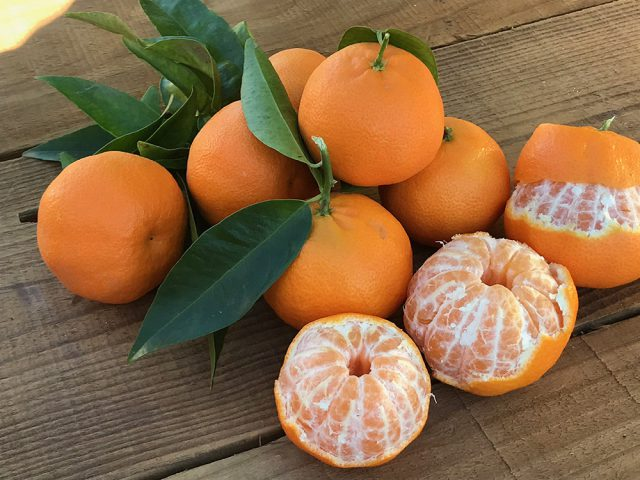 mandarinas-img-1472-640x480