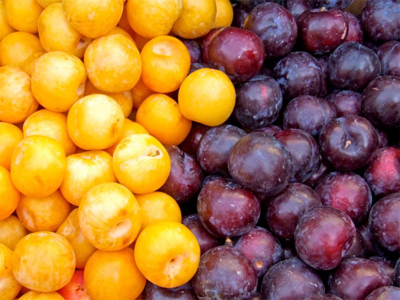 ciruelas-plums