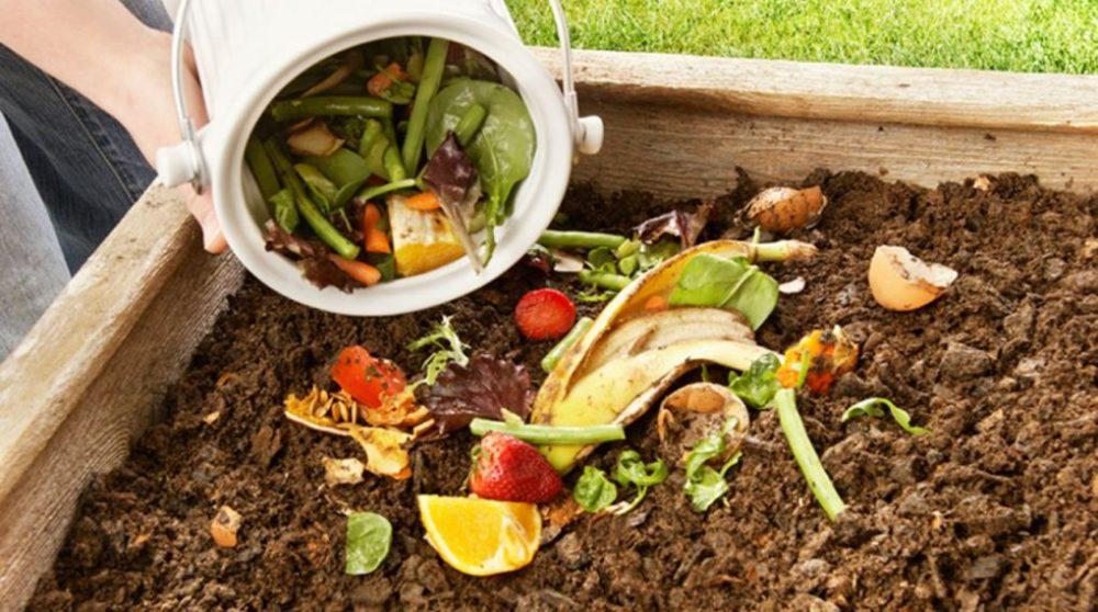 compost-1-1020x570